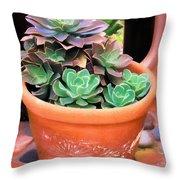 Kula Lodge 50 Throw Pillow