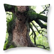 Kyoto Temple Tree Throw Pillow by Carol Groenen