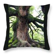 Kyoto Temple Tree Throw Pillow