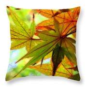 Kyoto's Beauty Of Autumn Throw Pillow