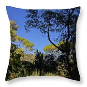 jungle in La Amistad National Park Panama 1 Throw Pillow
