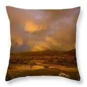 La Boca Rain Throw Pillow