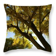 La Boca Ranch Cottonwood Throw Pillow