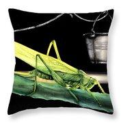 La Locusta E Il Secchio Throw Pillow