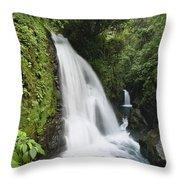 La Paz Waterfalls In Rainforest Costa Throw Pillow