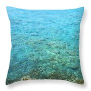 La Perouse Water Throw Pillow