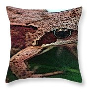 La Petite Grenouille Throw Pillow