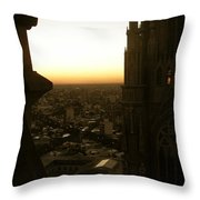 La Plata - Cathedral Throw Pillow