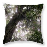 La Tigra Rainforest Canopy Throw Pillow