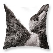 La Valleuse Throw Pillow by Olivier Le Queinec