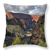 La Verkin Creek Throw Pillow
