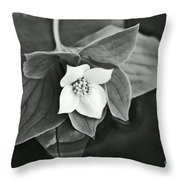 La Vie En Noir Et Blanc Throw Pillow