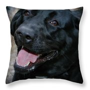 Lab Smile Throw Pillow