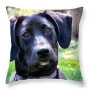 Lab Works Throw Pillow