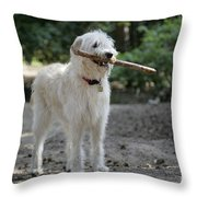 Labradoodle Holding Stick Throw Pillow