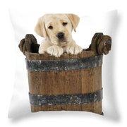 Labrador Puppy In Bucket Throw Pillow