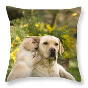 Labrador Puppy Playing With Parent Throw Pillow