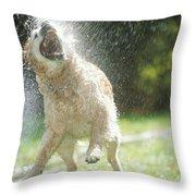 Labrador Retriever And Hose Throw Pillow