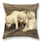 Labrador Retriever Puppies And Feather Vintage Throw Pillow