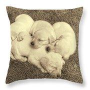 Labrador Retriever Puppies Nap Time Vintage Throw Pillow by Jennie Marie Schell