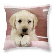 Labrador Retriever Puppy Throw Pillow