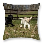 Labrador Retriever Pups Throw Pillow by Linda Freshwaters Arndt