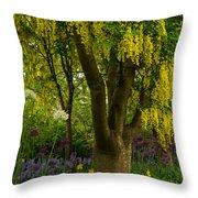 Laburnum Tree In Bloom Throw Pillow