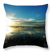 Lacassine Afternoon Sparkle Throw Pillow