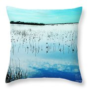 Lacassine Nwr Blue Pool Throw Pillow