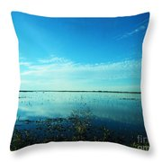 Lacassine Nwr Pool Blue And Green Throw Pillow