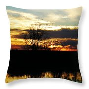 Lacassine Painted Sunset Throw Pillow