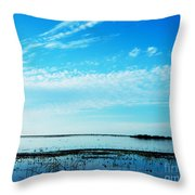 Lacassine Pool Louisiana Afternoon Throw Pillow