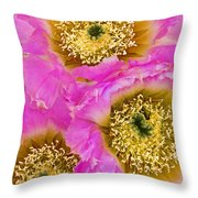Lace Cactus Flowers Throw Pillow