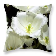 Lace Palm Springs Throw Pillow
