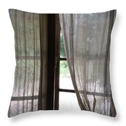 Lace Window Covering. Throw Pillow