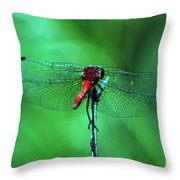 Lace Wings Throw Pillow
