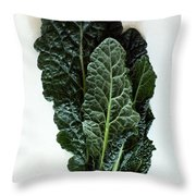 Lacinato Kale Throw Pillow