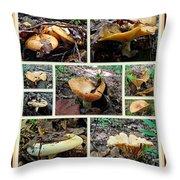 Lactarius Torminosus - Yellow Mushrooms Throw Pillow