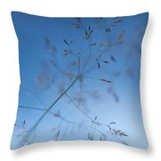 Lacy Patterns Of Grass Throw Pillow