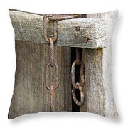 Ladder Chain Color Throw Pillow