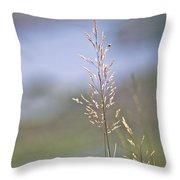 Lades View Meadow Throw Pillow