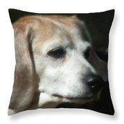 Lady 15 Throw Pillow