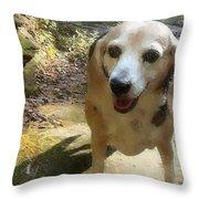 Lady 17 Throw Pillow