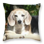 Lady 20 Throw Pillow