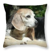 Lady 21 Throw Pillow