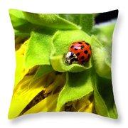 Ladybug And Sunflower Throw Pillow