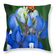 Lady Bug And Bluebonnet Throw Pillow