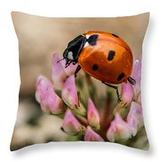 Lady Bug On Clover Throw Pillow