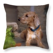 Lady In Cinque Terre Throw Pillow