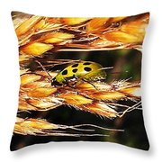 Lady Of A Different Color... Throw Pillow